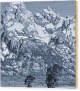 Cool Blue Monotone Grand Teton Wood Print