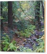 Cool Creek On Mt Tamalpais Wood Print