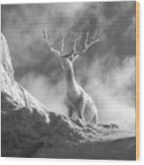 Cool Deer 2 Wood Print