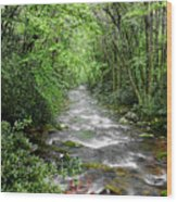 Cool Green Stream Wood Print