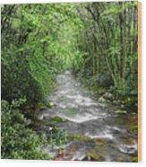 Cool Green Stream Wood Print