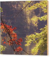 Cool Vermont Autumn Day Wood Print