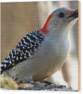Cool, Woodpeckers Like Sunflower Seeds Wood Print