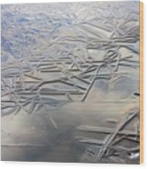 Coolness Wood Print