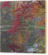 Cooper Mill Pond Wood Print