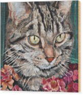 Cooper The Cat Wood Print