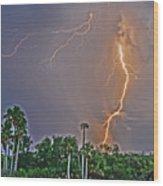 Cooper's Bayou Stricken Wood Print