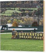 Cooperstown Dreams Park Wood Print