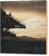 Coors Field At Sunset Wood Print