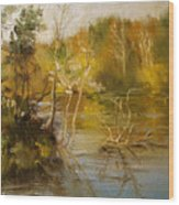 Coosa River In The Fall Wood Print