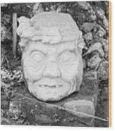 Copan Ruins Artifacts IIi Wood Print
