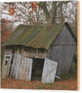 Copening Hill Shed Wood Print