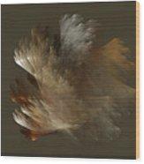 Copper And Metal Fiber Spray Wood Print