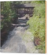 Copper Falls State Park Wisconsin. Wood Print