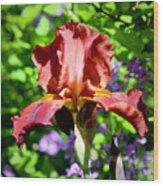 Copper Iris Squared 5 Wood Print