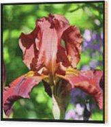 Copper Iris Triptych Squared Wood Print