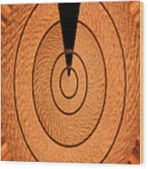 Copper Panel Abstract Wood Print
