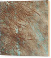 Copper Pines Wood Print
