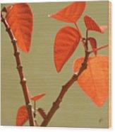 Copper Plant Wood Print