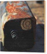 Copper Top Wood Print