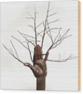 Copper Tree Hand A Sculpture By Adam Long Wood Print by Adam Long