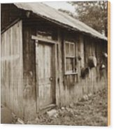 Copper Valley Shack Wood Print