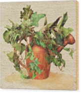 Copper Watering Can Wood Print