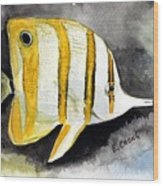 Copperband Butterflyfish  Wood Print