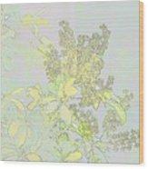 Coprosama Replens Pastel Wood Print