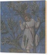 Copy Of Giotto's Frescoes Wood Print