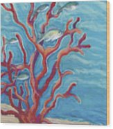 Coral Assets Wood Print