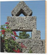 Coral Castle For Love Wood Print