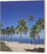 Coral Coast Palms Wood Print