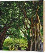 Coral Gables Wood Print