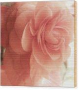 Peach Petals Glow Wood Print