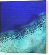 Coral Reef Seen Through Clear Waters Surrounding Mosso Island Wood Print