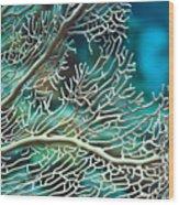 Coral Texture Wood Print