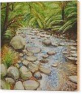 Coranderrk Creek Yarra Ranges Wood Print