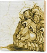 Cordoba Lion Wood Print