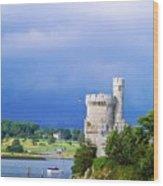 Cork City, Blackrock Castle Wood Print