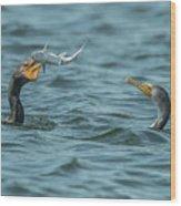 Cormorant Fish Fight Wood Print