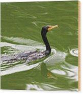 Cormorant Wood Print