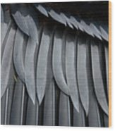 Cormorant Wing Feathers Abstract Wood Print