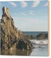 Cormorants At El Madador Beach Wood Print