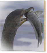 Cormorant's Whopper Dive Catch Wood Print