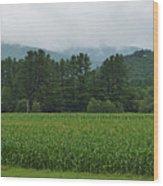 Corn Among The Mountains Wood Print
