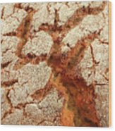 Corn Bread Crust Wood Print