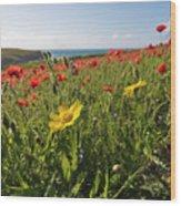 Corn Marigold And Poppies Wood Print