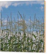 Corn Tassels In The Sky Wood Print