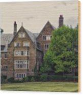 Cornell University Ithaca New York Pa 03 Wood Print